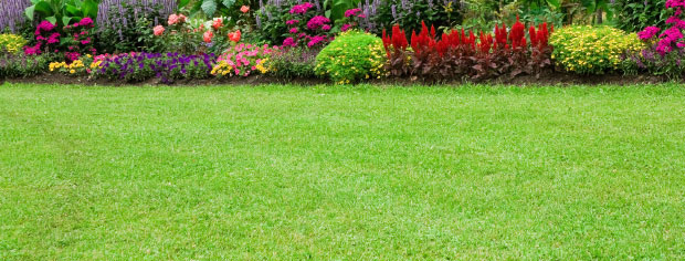 Landscaping & Sprinklers, Salem, OR